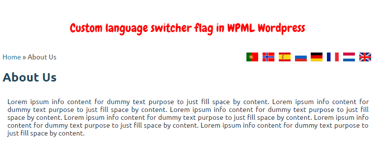 Custom language switcher flag in WPML WordPress