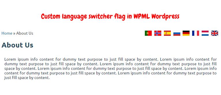 Custom language switcher flag in WPML WordPress